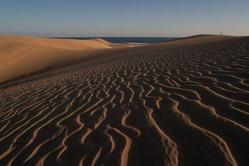 Ảnh lưu trữ miễn phí về các đụn cát, cát, cồn cát, khô khan