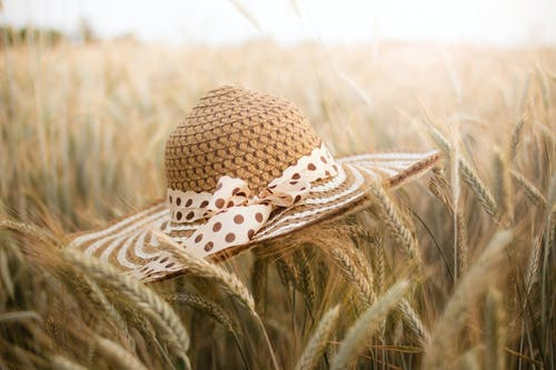 Shallow Focus Photo of Brown Straw Hat on Wheat Field