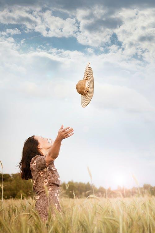 Foto stok gratis gandum, kaum wanita, kebebasan, kedudukan