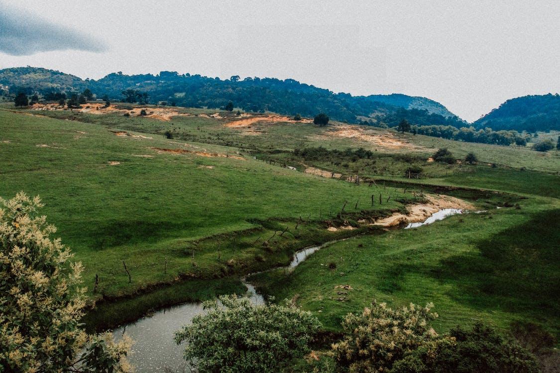 activități agricole, agricultură, apă