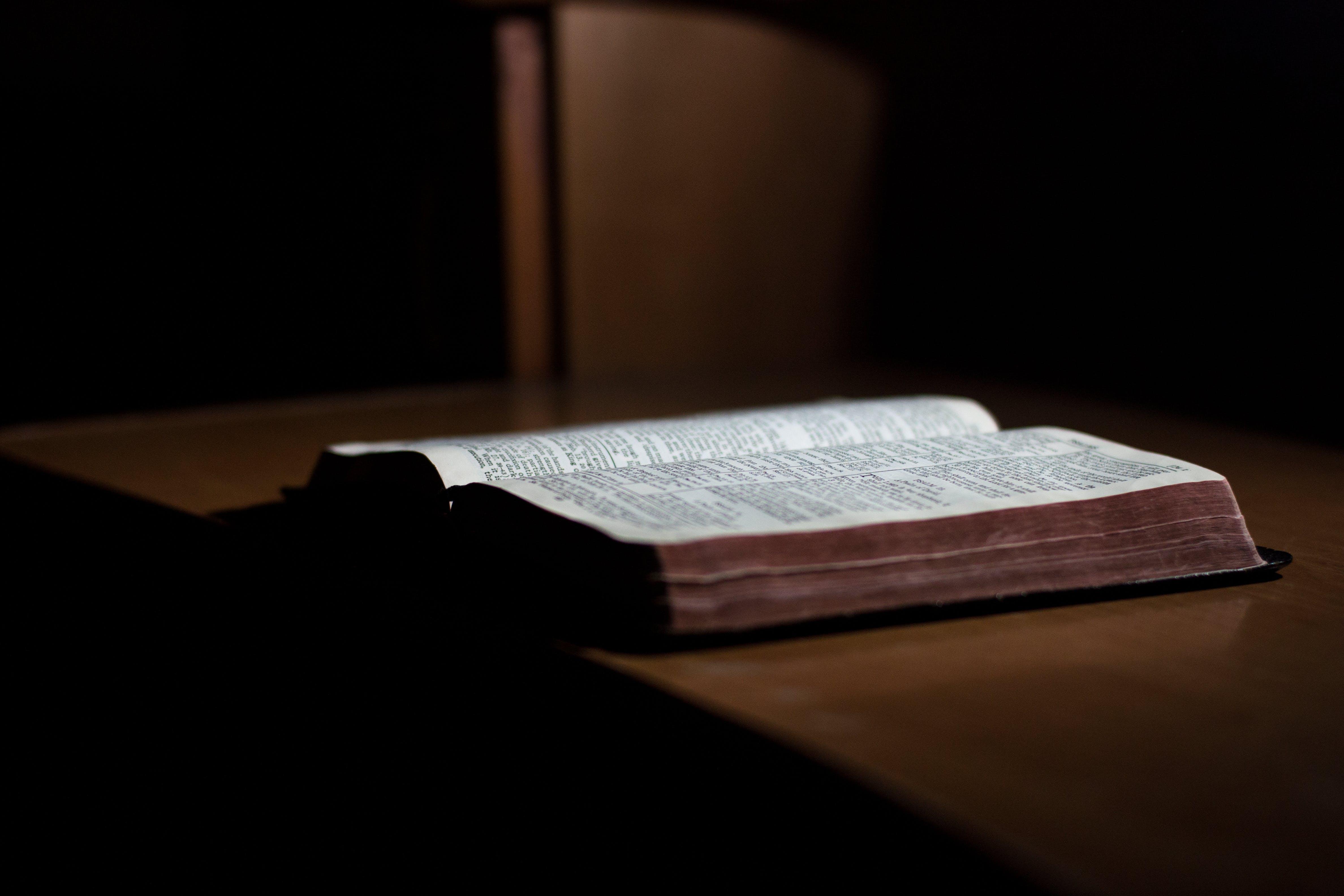 Základová fotografie zdarma na téma bible, biblický zákon, čtení, dřevo