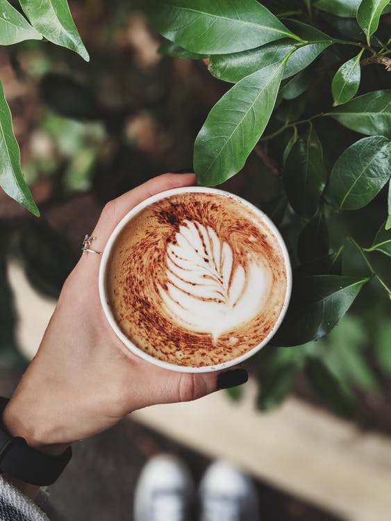 Person Holding Coffee Cup
