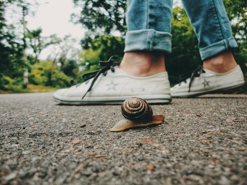 Snail Near Feet