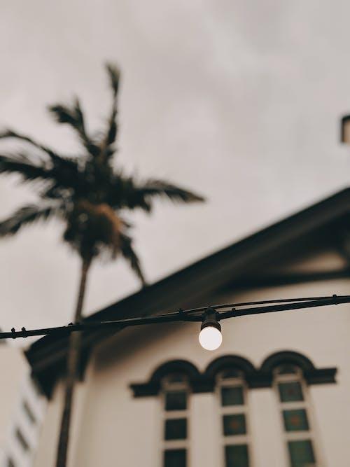 Δωρεάν στοκ φωτογραφιών με αγορά ακινήτων, άνεμος, αρχιτεκτονική, αρχιτεκτονικό σχέδιο
