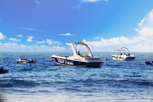 乘船遊覽, 海灘, 深海 的 免費圖庫相片