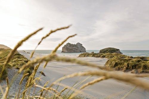 Ilmainen kuvapankkikuva tunnisteilla hiekka, hiekkaranta, luonto, merenranta