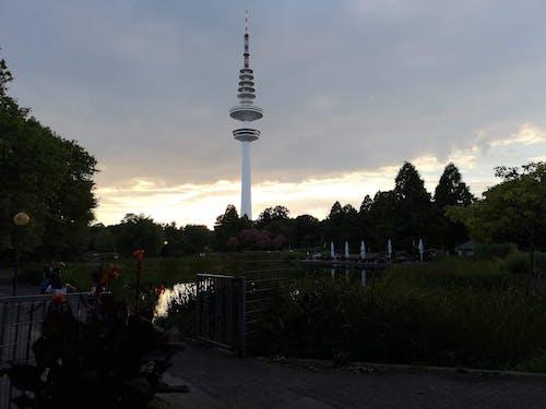 Gratis stockfoto met duitsland, Hamburg, park, planten un blomen