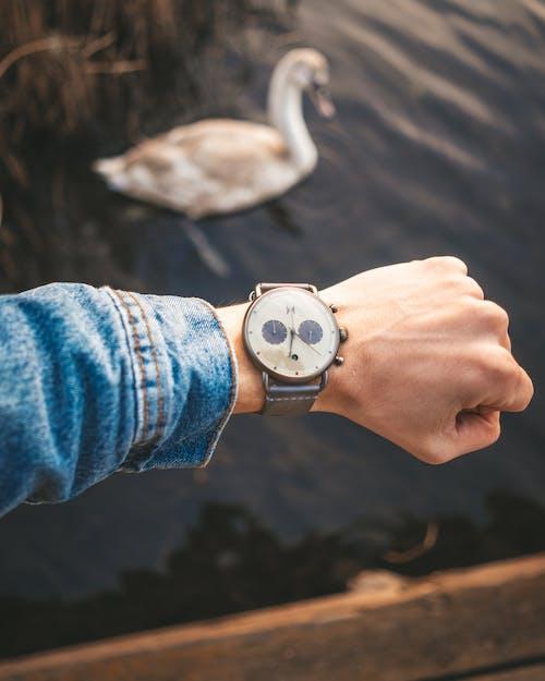 Δωρεάν στοκ φωτογραφιών με αξεσουάρ, παρακολουθώ, ρολόι καρπού, χέρι