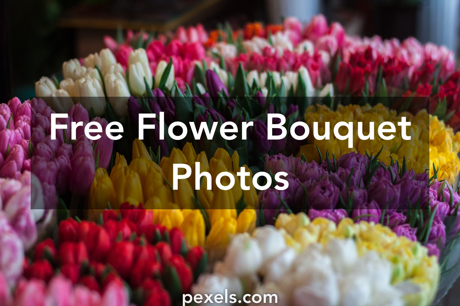 1000+ Engaging Flower Bouquet Photos · Pexels · Free Stock Photos