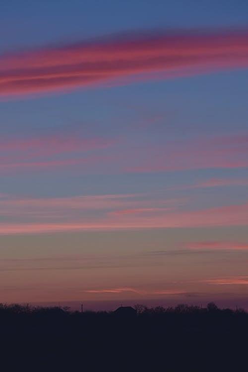 Безкоштовне стокове фото на тему «вечір, горизонт, дерева, драматичний»