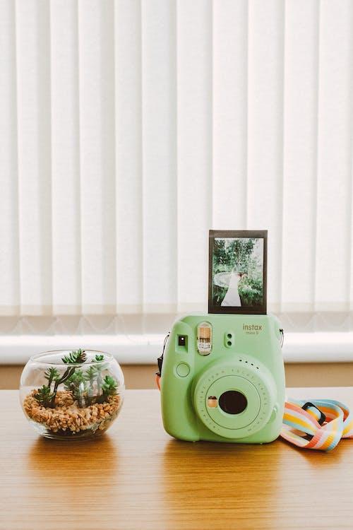 기술, 실내, 아날로그 카메라
