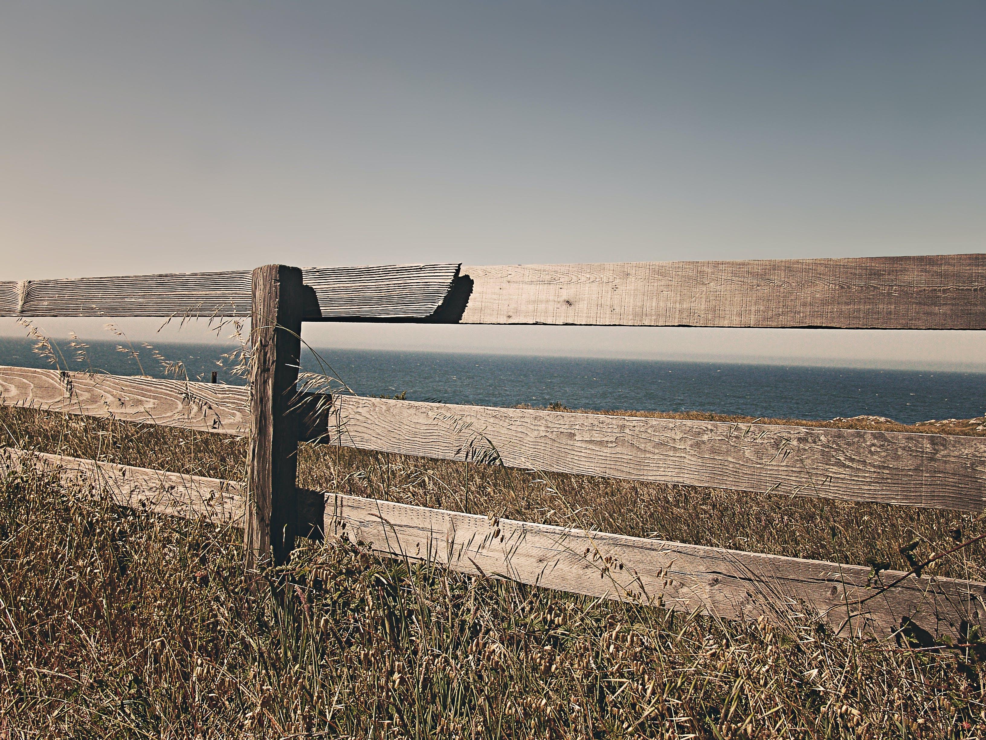Free stock photo of sea, ocean, meadow, fence