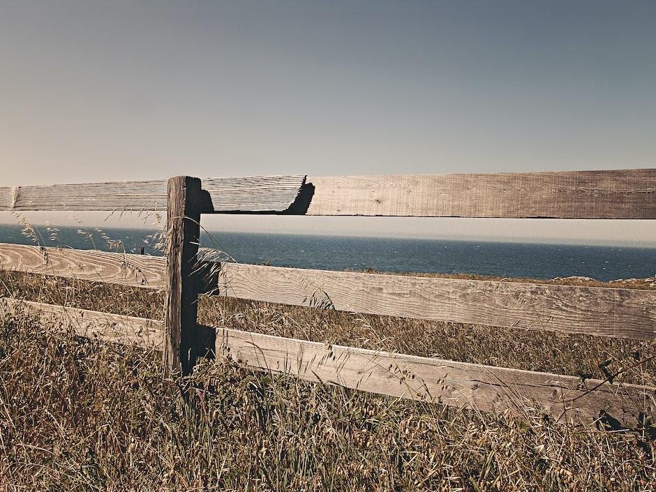 border, fence, meadow