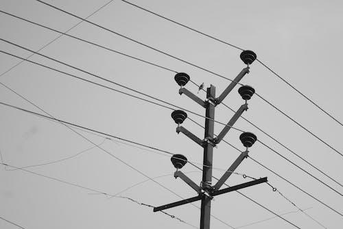 Základová fotografie zdarma na téma černobílá, černobílá fotografie, dráty, elektrické dráty