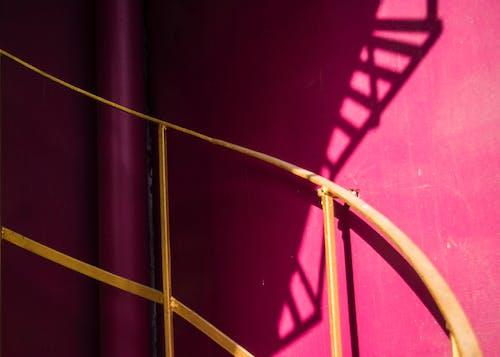 Základová fotografie zdarma na téma geometrické tvary, jasné barvy, radost, růžová