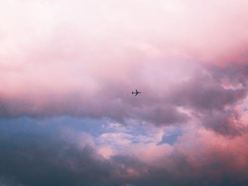 Gratis lagerfoto af flyvemaskiner, HD-baggrund, sky
