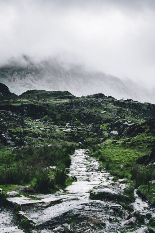 Rocky Pathway Surrounded With Grass