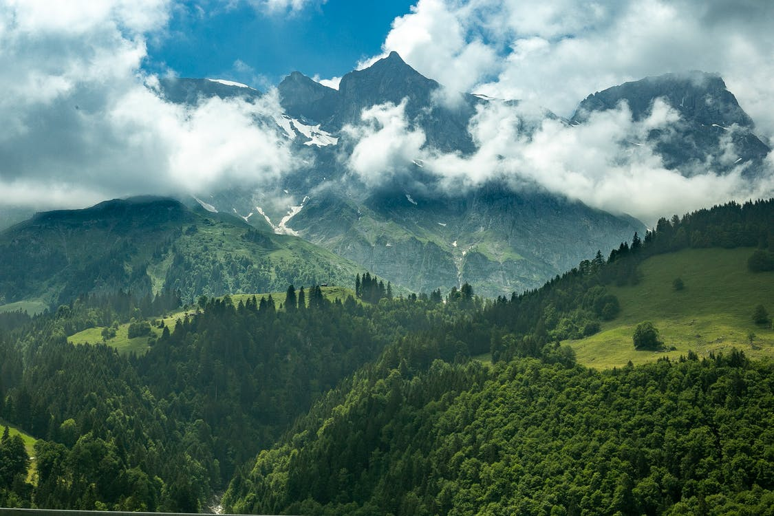 Landscape Photo of Trees and Mountain Ranges