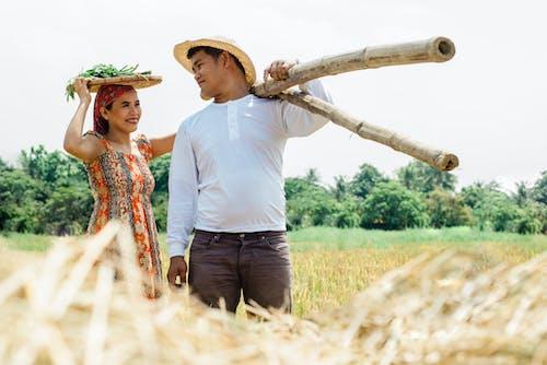 Imagine de stoc gratuită din adâncime de câmp, adulți, agricultori, agricultură