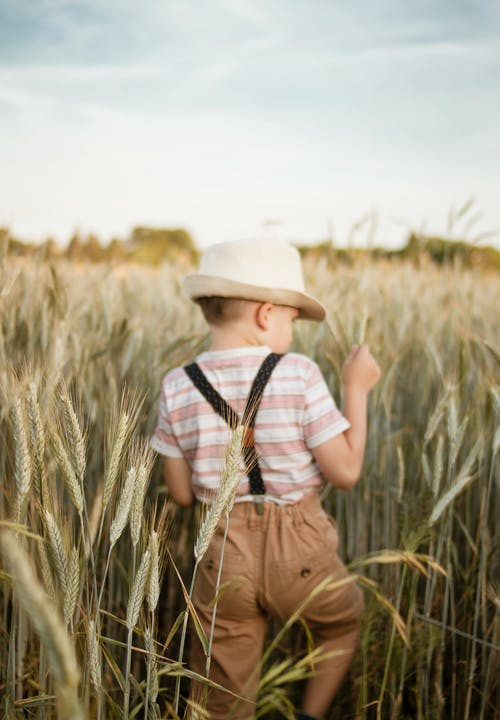 Photo of a Boy in White Trilby Hat in Wheat Field