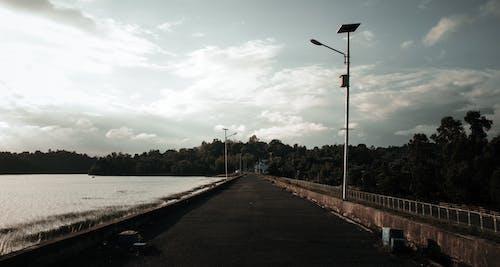 Základová fotografie zdarma na téma