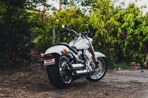 Photo of a White Motorcycle Parked Beside Plants