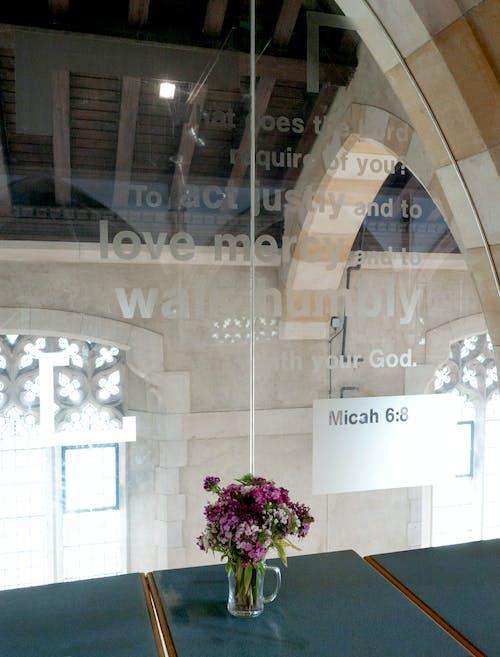 가벼운, 교회, 꽃, 성경 구절의 무료 스톡 사진