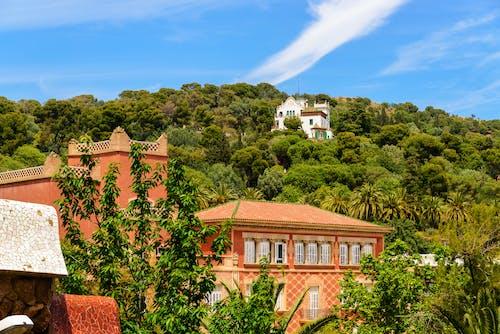 Безкоштовне стокове фото на тему «барселона, іспанія, путешествовать»