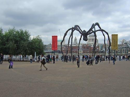 거미, 런던, 세인트 폴 성당, 아트 갤러리의 무료 스톡 사진
