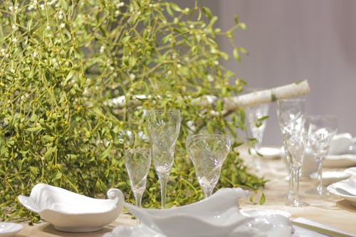 Close-up of Plants on Table