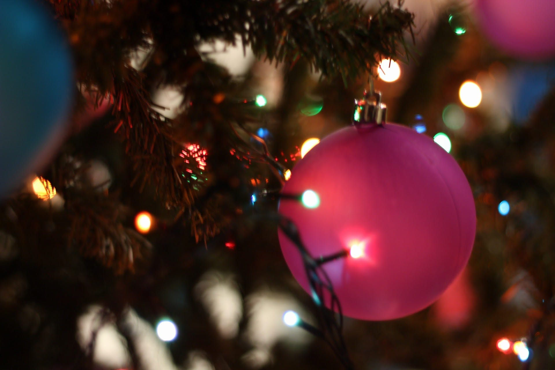 Close-up of Christmas Tree at Night