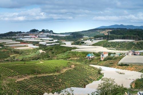 Photos gratuites de agriculture, arbres, architecture, campagne