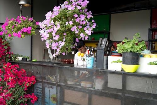 Imagine de stoc gratuită din acțiuni, aranjament floral, bufet, bursă