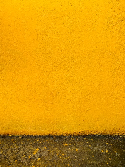 Photo of Mustard Yellow Wall