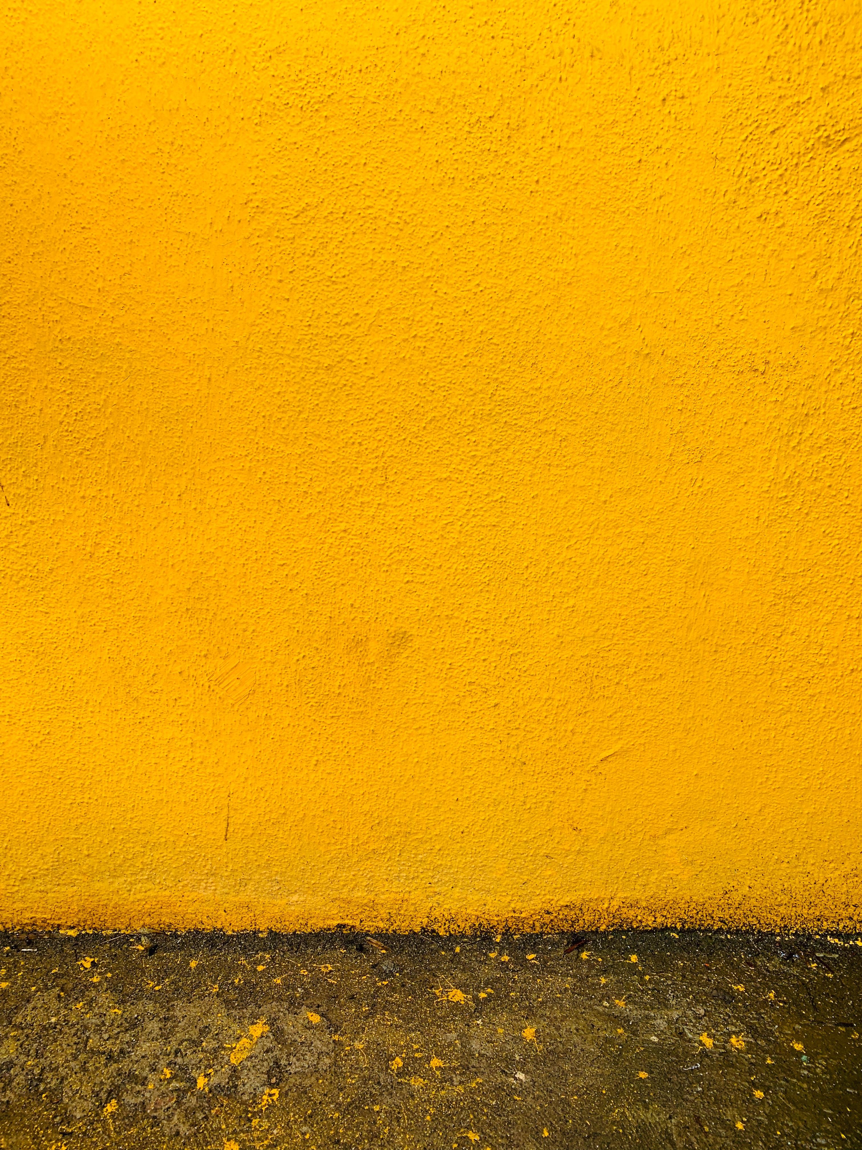 Photo Of Mustard Yellow Wall Free Stock Photo