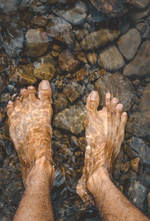 Gratis arkivbilde med elv, fot, klart vann, lag