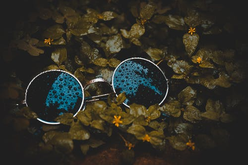 Základová fotografie zdarma na téma barevné sluneční brýle, barvy, čerstvý, dešťové kapky