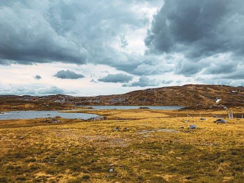 Foto profissional grátis de campo, céu nublado, cores do outono, fotografia de paisagem