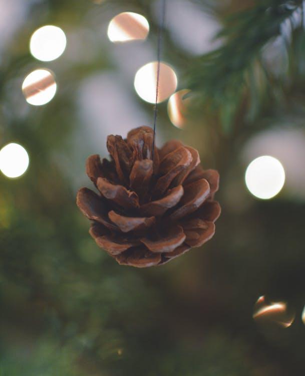 クリスマス, コーン, テクスチャ