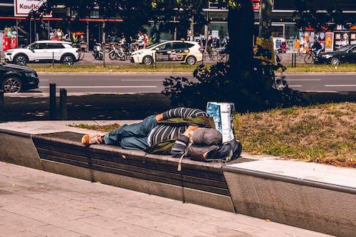 Foto d'estoc gratuïta de adult, descansant, dia, dorment