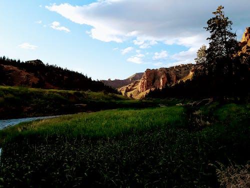 Fotobanka sbezplatnými fotkami na tému central oregon, jarné obdobie, joe leineweber, Oregon