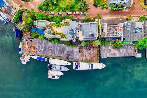Immagine gratuita di acqua, alberi, architettura, barche