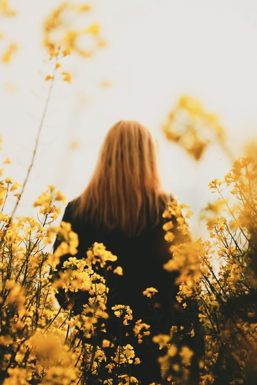 Low Angle Photo of Woman Standing Near Yellow Flowers