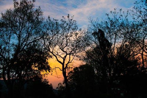 多雲的天空, 日落, 漆黑 的 免费素材照片