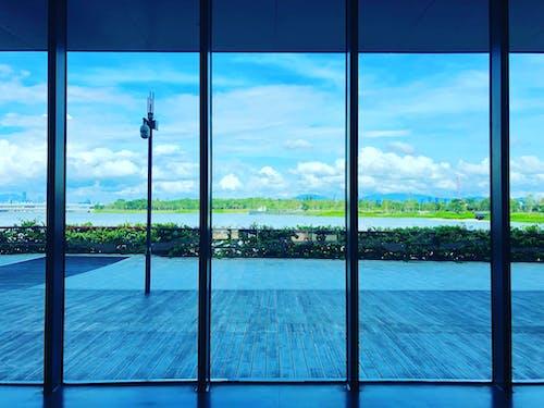 Imagine de stoc gratuită din albastru, arbore, cer, iarbă