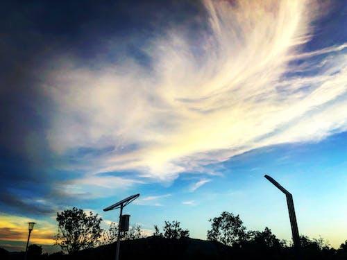 Imagine de stoc gratuită din amurg, apus, arbore, cer