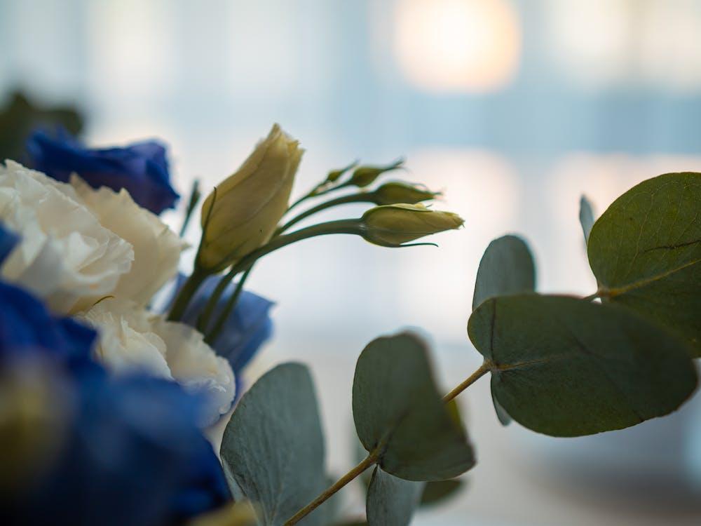 blumen, dekoration, hochzeit
