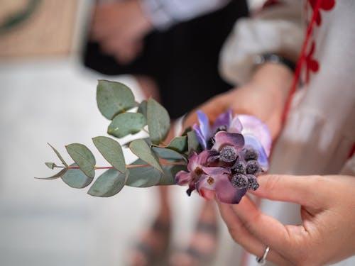 Imagine de stoc gratuită din decorațiune, flori, nuntă, ucraineană nunta