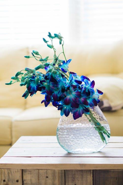 Vazoda Mavi çiçekler