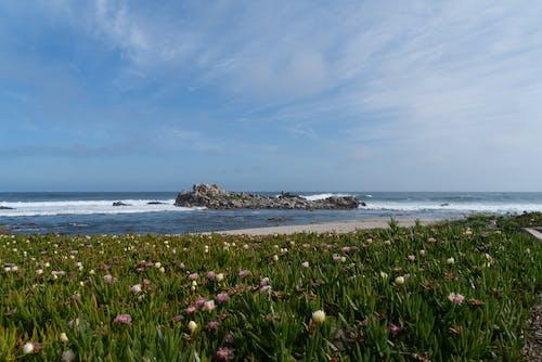Free stock photo of beach, blue, california, clouds